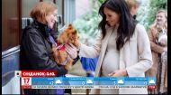 СМИ раскритиковали яркий образ герцогини Сассекской для посещения приюта для животных