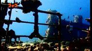 Найбільші кладовища суден