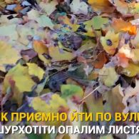 М'які светри, запашний чай та читання під шум дощу: причини любити осінь
