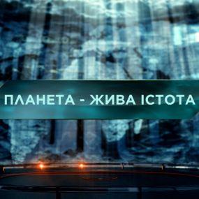 Затерянный мир 2 сезон 38 выпуск. Планета - живое существо