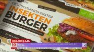 Замори червячка: в Германии начали продавать бургеры с мясом личинок