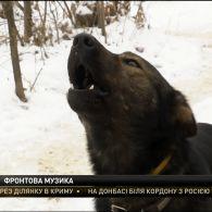 Пройшов через найзапекліші ворожі атаки – історія фронтового та музичного собаки Патрона