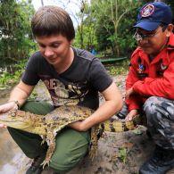 Как Дмитрий Комаров змею и крокодила из домов в тропики возвращал