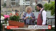 Как недорого украсить свой балкон цветами