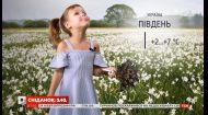 Погода від Фросі в Україні та всьому світі