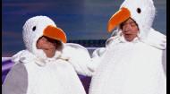 Як бачать приїжджих корінні одесити - чайки. Вечірній квартал у Одесі