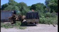 От урагана в Украине погиб человек – подробности смотри в ТСН в 19:30