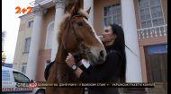 Амазонка на дорогах Рівного: як дівчина на коні епатувала місцевих водіїв