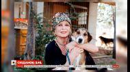 Брижит Бардо может попасть за решетку из-за чрезмерной любви к животным