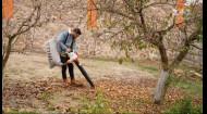 Мульчування – Осінь на дачі зі Stihl