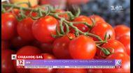 Дорогі закрутки: чи потраплять цьогорічні помідори в банки українських господинь