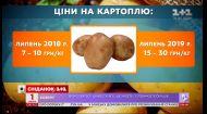 """""""Золота"""" бульба: чому ростуть ціни на картоплю"""