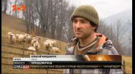 В Украине зарегистрировали первый украинский продукт с географическим указанием