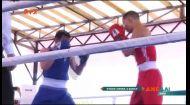 У столиці обрали володаря Кубку Києва з боксу