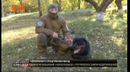 "Спецназ ""КОРД"" взял на вооружение собак-штурмовиков"