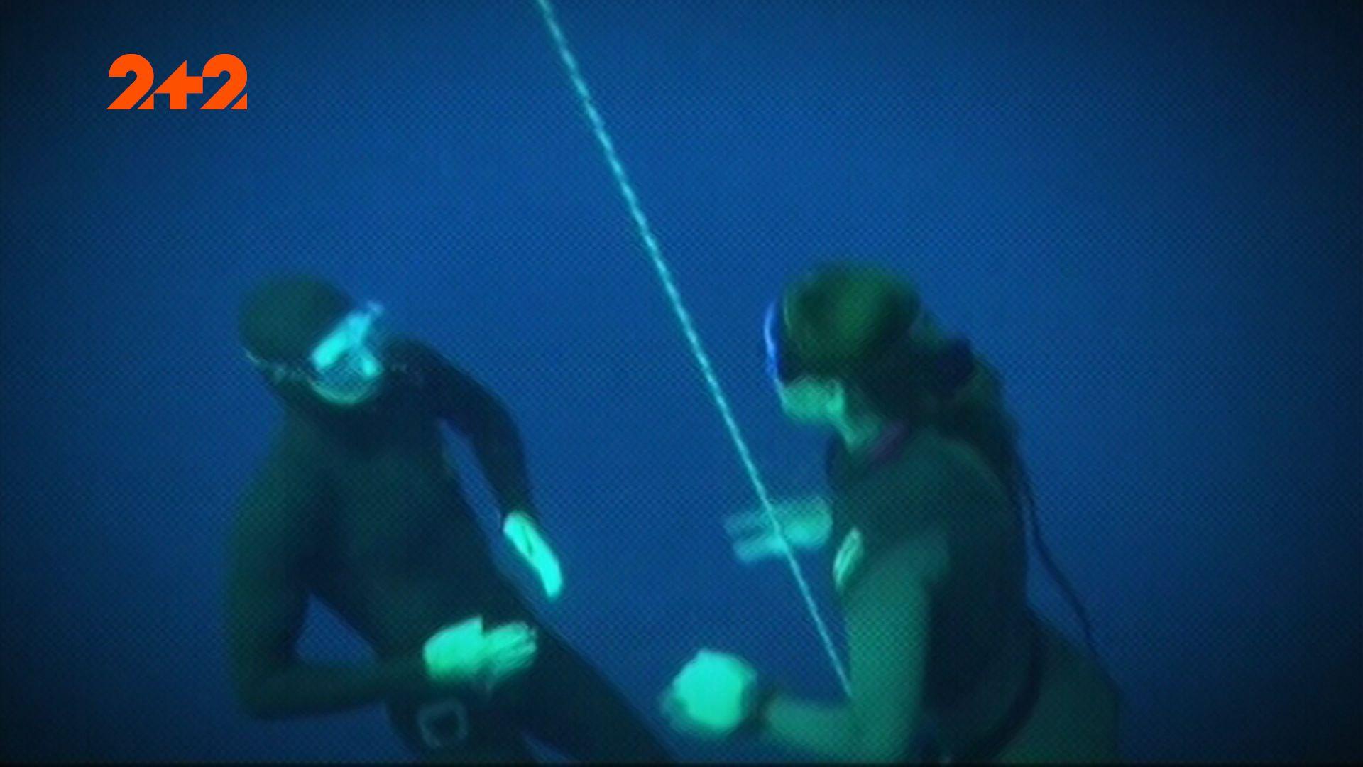 Предком человека было морское млекопитающее – теория «Homo aquaticus»