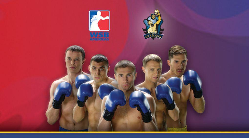 Всесвітня серія боксу (WSB)