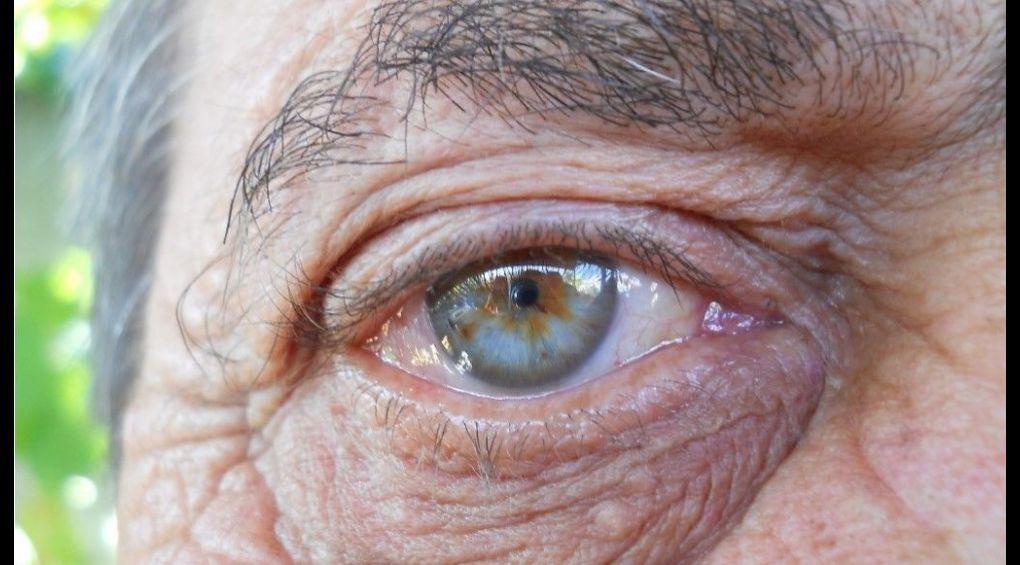 Що відбувається з нашим організмом під час старіння?