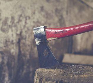 На Херсонщині браконьєри побилися із лісниками