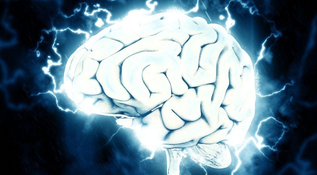 Як розвивати мозок за допомогою фізичних вправ