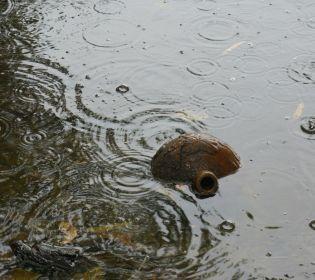 Францію накрили шалені зливи. Влада почала евакуацію населення