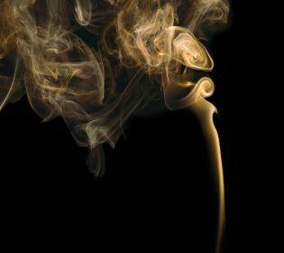 П'ять найнеприємніших запахів за версією журналу Neuroscience