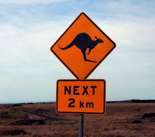 Як на дорогах світу борються зі зменшенням аварійності