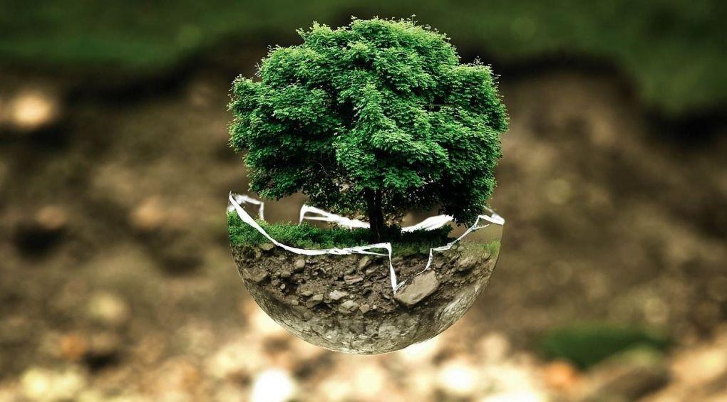 9 міфів про екологію, в які ми всі віримо