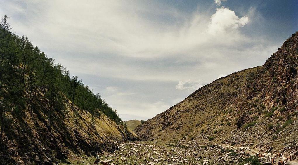 Французский фотограф показал Монголию, какой ее еще не видели