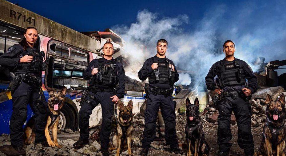 """Поліція Ванкувера випустила календар з чотирилапими """"напарниками"""" 2"""
