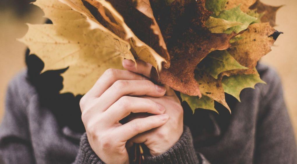 Самые красивые уголки Украины, где стоит побывать осенью