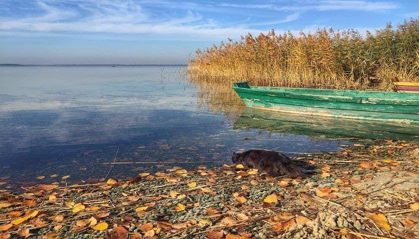 Найкрасивіші куточки України, де варто побувати восени 5