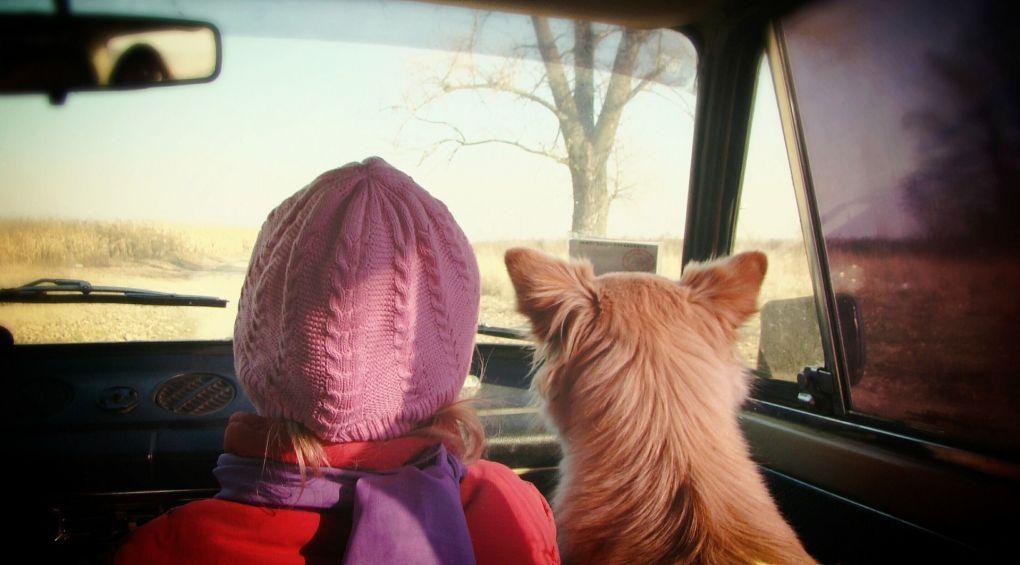 Дитина в авто: як перевозити й не заробити штраф