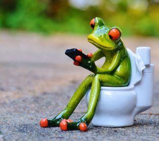 Всесвітній день туалету: фотопідбірка дивовижних унітазів світу