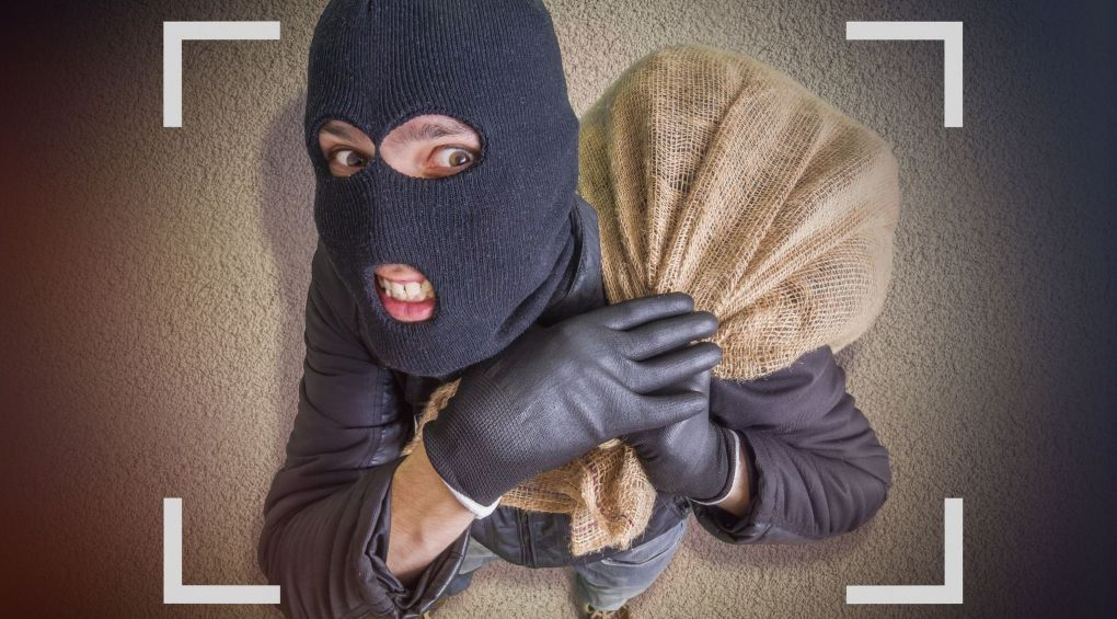 Черепашка-ниндзя: изобретательный вор в Ирпене поразил Сеть
