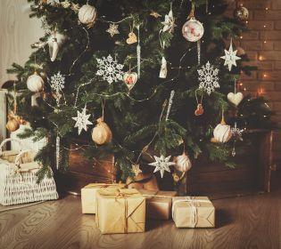 Як обрати новорічну ялинку