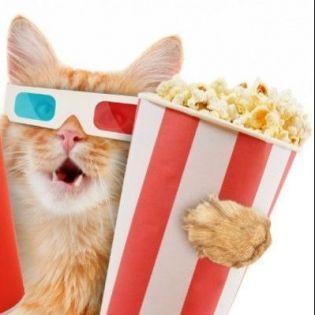 """""""Кінчик під винчик"""" — всі секрети світу кіно в одному місці"""