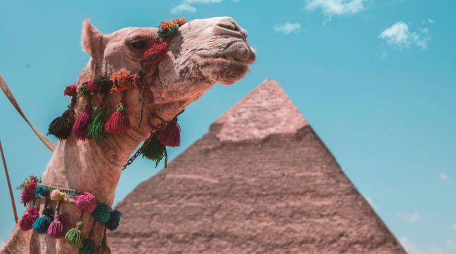 Туристам в Египте разрешили бесплатную съемку во всех музеях и гробницах