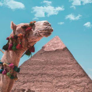 Туристам у Єгипті дозволили безкоштовну зйомку в усіх музеях та гробницях