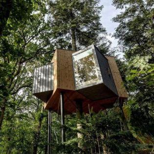 У Данії відкрили готель на дереві (фото)