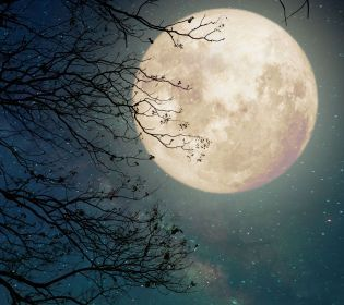 Тест: Що ви знаєте про Місяць?