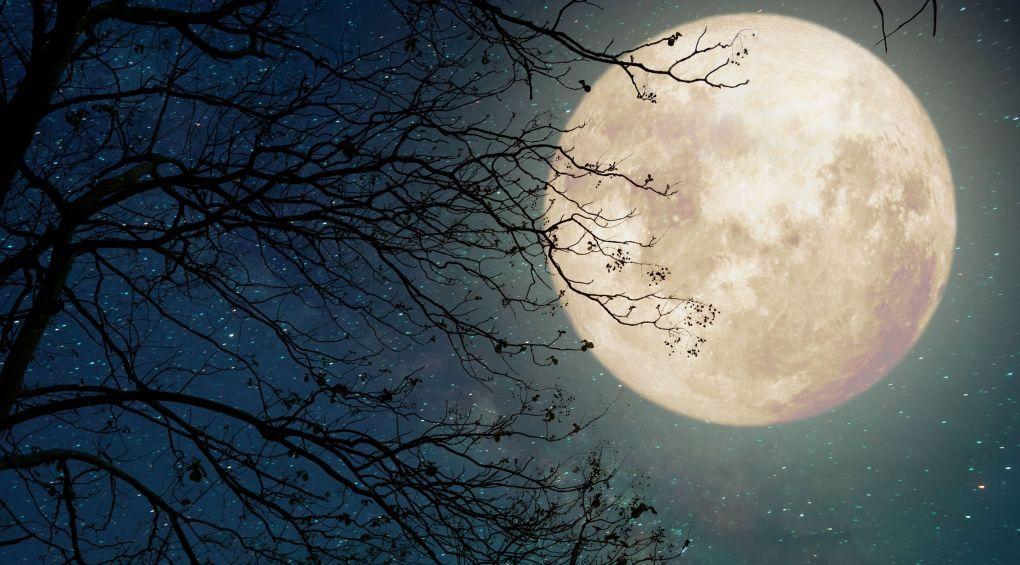 Тест: Что вы знаете о Луне?
