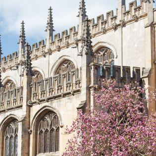 Які університети світу  випускають найбагатших студентів: Рейтинг