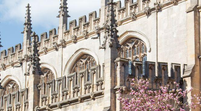Какие университеты мира выпускают самых богатых студентов: Рейтинг