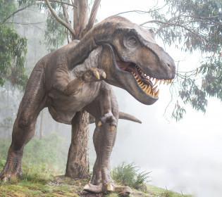 Предок птахів і рептилій: В Австралії виявили рештки «Залізного дракона»