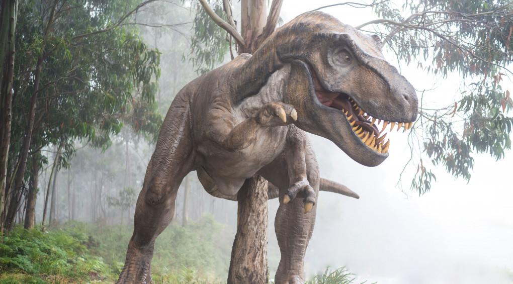 Предок птиц и рептилий: В Австралии обнаружили останки «Железного дракона»