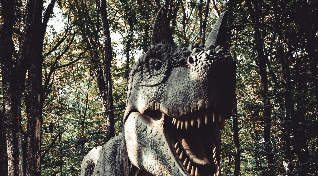 И такое бывает: В Австралии впервые нашли останки пернатого динозавра (фото)