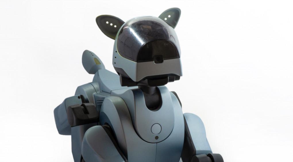 Американські копи взяли на службу собак-роботів (відео)