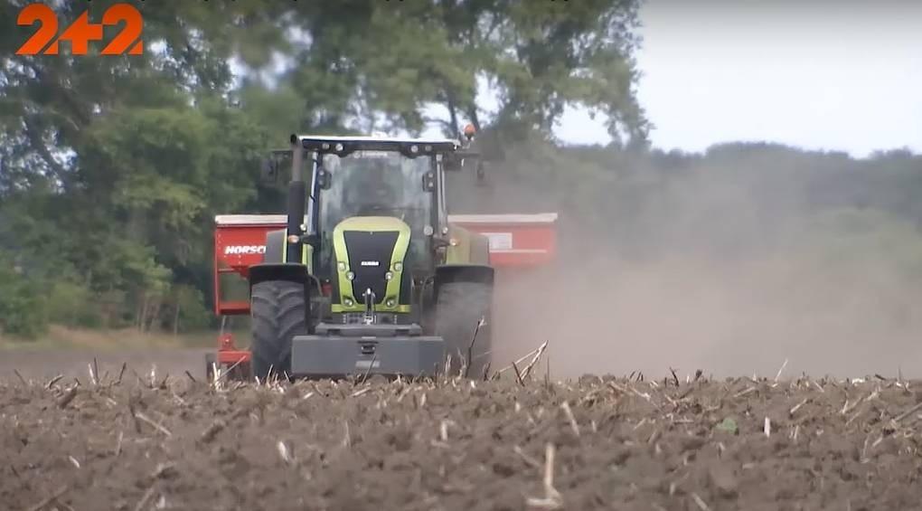 Україна йде на рекорд: аграрії планують зібрати небачений раніше врожай пшениці
