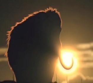 Планируют заселить Землю мамонтами: когда ученые вернут к жизни доисторических животных